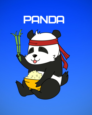 Cool Panda Illustration Background for Nokia C1-01