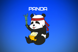 Cool Panda Illustration Background for Android, iPhone and iPad