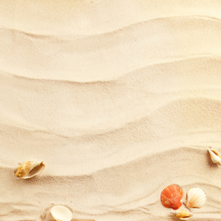 Sand and Shells - Fondos de pantalla gratis para iPad 2