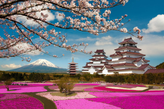 Mount Fuji in Japan Background for Android, iPhone and iPad