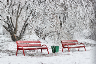 Benches in Snow Picture for Android, iPhone and iPad