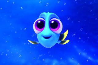 Finding Dory Background for Samsung P1000 Galaxy Tab