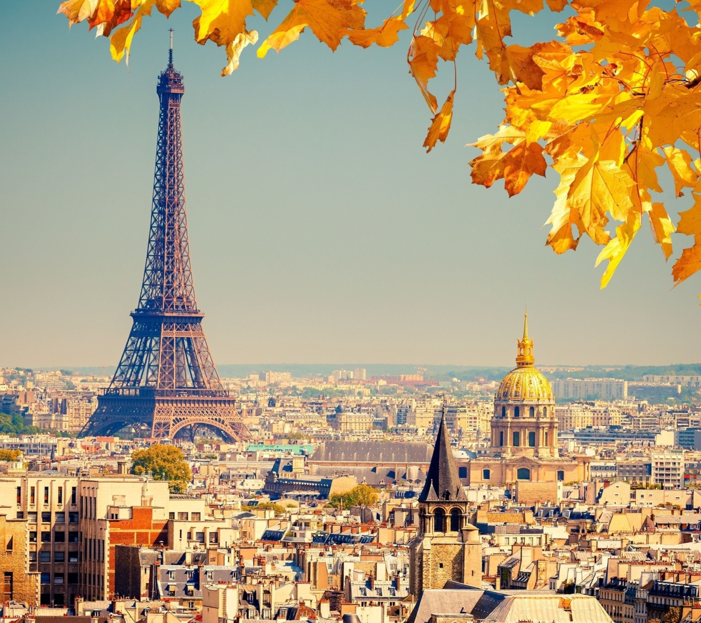 Screenshot №1 pro téma Eiffel Tower Paris Autumn 1440x1280