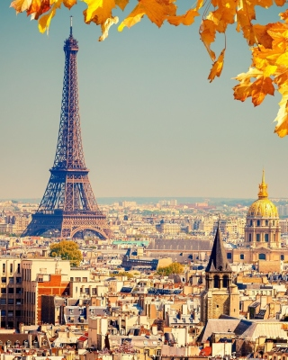 Eiffel Tower Paris Autumn Wallpaper for Nokia Asha 306