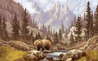 Bear At Mountain River Wallpaper for Android, iPhone and iPad