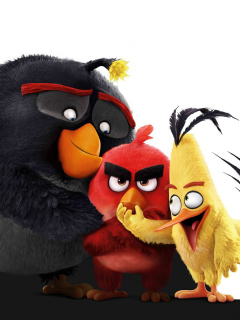 Screenshot №1 pro téma Angry Birds the Movie 2016 240x320