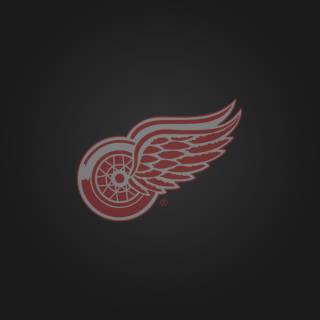 Free Detroit Red Wings Picture for iPad Air