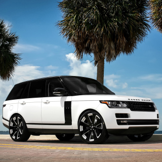 Range Rover White Picture for iPad Air