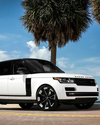 Range Rover White Background for Nokia Asha 308