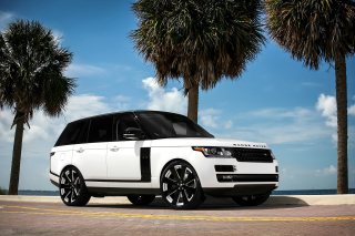 Range Rover White Picture for Android, iPhone and iPad