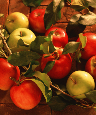Kostenloses Apples And Juicy Leaves Wallpaper für Nokia X7