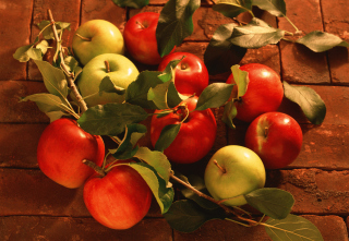 Apples And Juicy Leaves sfondi gratuiti per 1200x1024