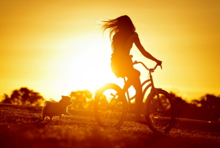 Sunset Bicycle Ride Background for Android, iPhone and iPad