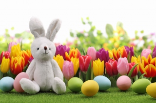 Happy Easter Wish Wallpaper for Android, iPhone and iPad