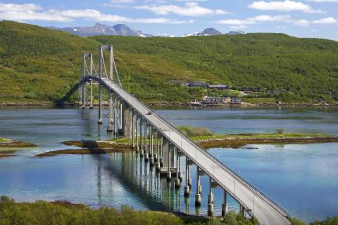 Suspension Bridge para LG E400 Optimus L3