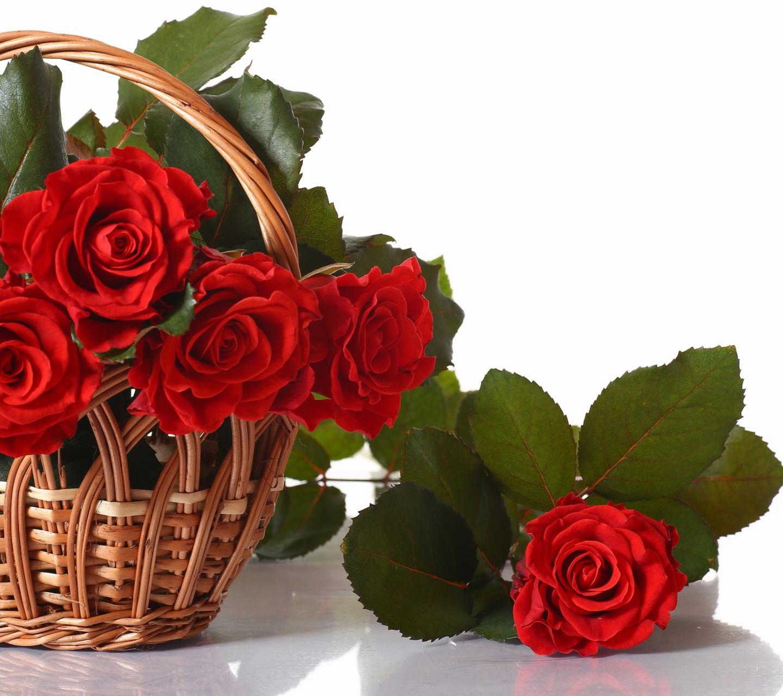 картинки корзина цветов для тебя нужно только выбрать