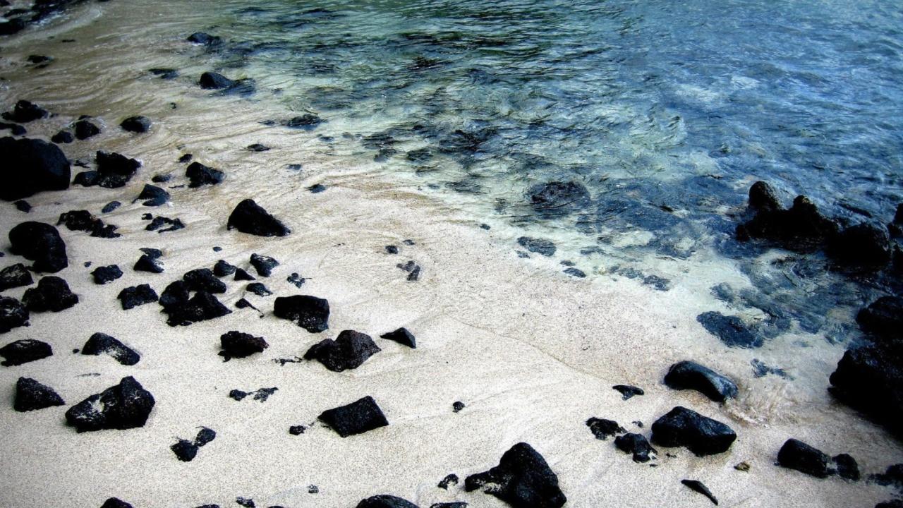 Black Stones On White Sand Beach