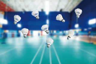 Free Badminton Court Picture for Android, iPhone and iPad