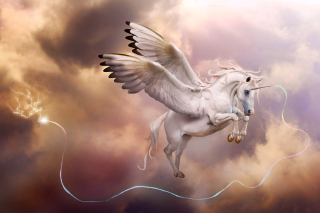 Free Pegasus, Unicorn Picture for Android, iPhone and iPad