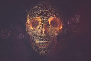 Skull Artwork Picture for Android, iPhone and iPad