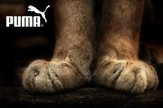 Puma Fluffy Logo Wallpaper for Android, iPhone and iPad