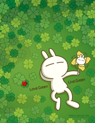 Love Green - Fondos de pantalla gratis para iPhone 5S