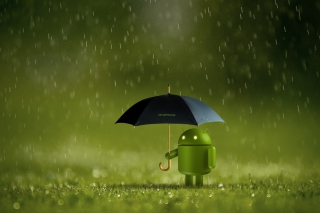 Android Rain sfondi gratuiti per cellulari Android, iPhone, iPad e desktop