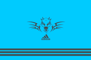 Adidas Blue Background Wallpaper for 960x854