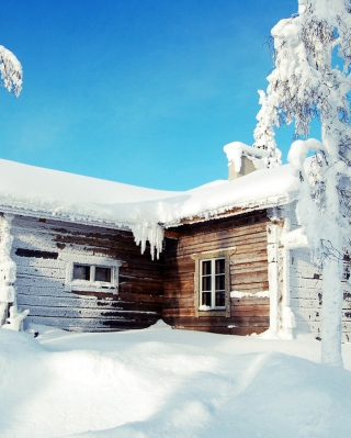 Free Winter House Picture for 240x320