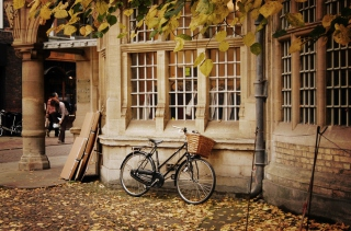 Bicycle And Autumn Picture for Android, iPhone and iPad