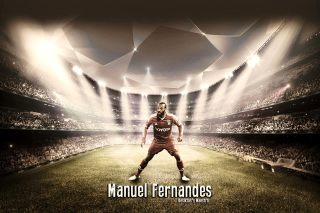 Free Manuel Fernandes Picture for Android, iPhone and iPad