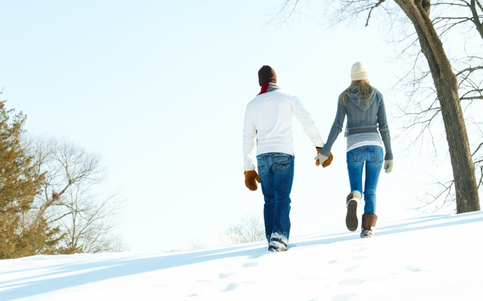 Fondo de pantalla Romantic Walk Through The Snow 1680x1050
