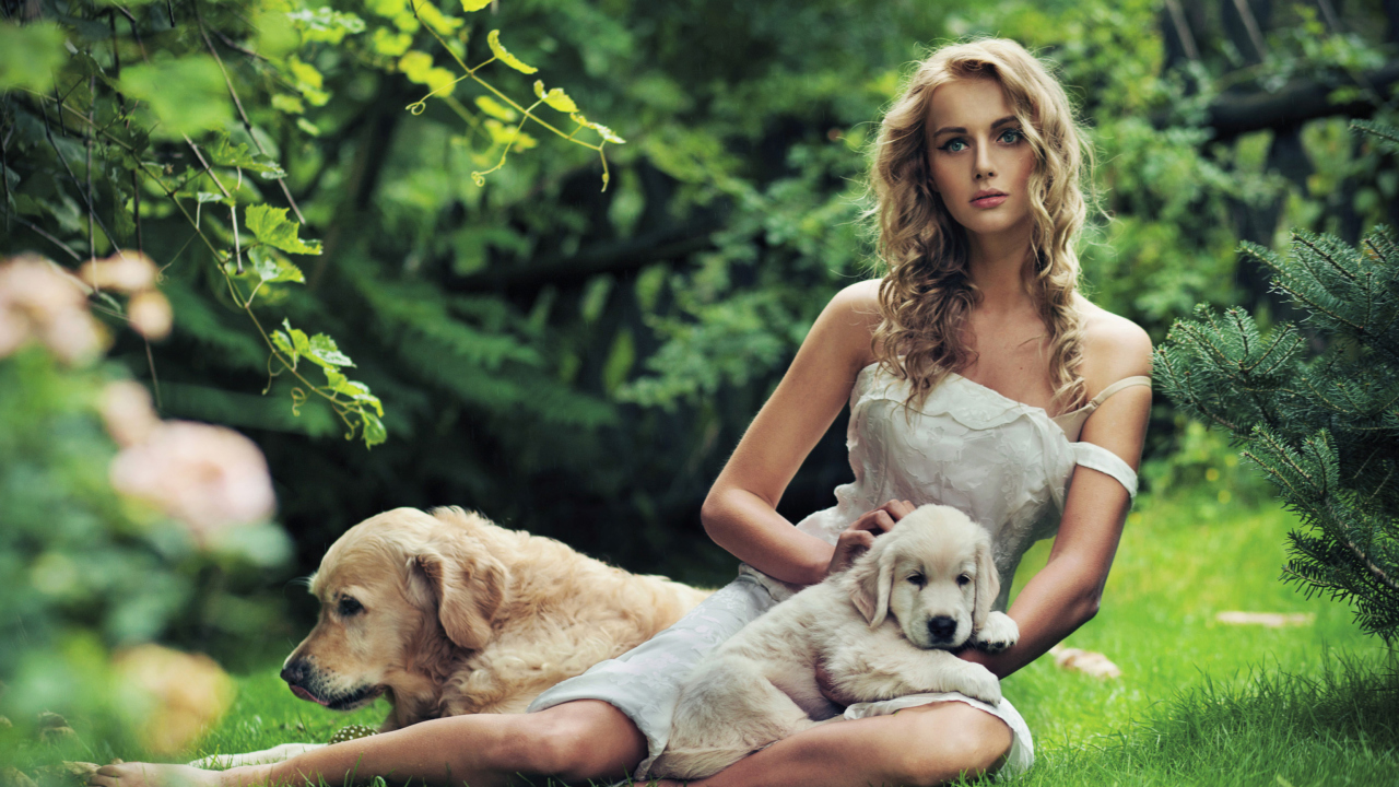 Model And Dogs