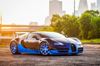 Free Bugatti Veyron Super Sport Auto Picture for Android, iPhone and iPad