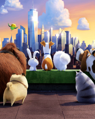 The Secret Life of Pets Gang Background for Nokia Asha 306