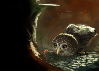Cute Owl Painting sfondi gratuiti per cellulari Android, iPhone, iPad e desktop