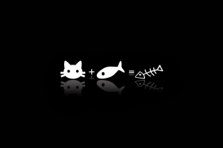 Cat ate fish funny cover Wallpaper for Android, iPhone and iPad