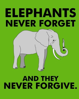 Free Elephants Never Forget Picture for Nokia Asha 306