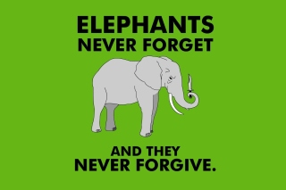 Elephants Never Forget Picture for Android, iPhone and iPad