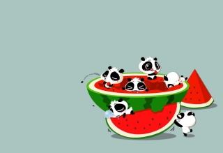 Panda And Watermelon Picture for Android, iPhone and iPad