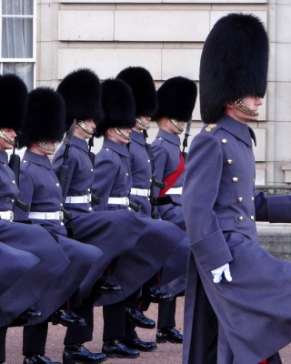 Free Buckingham Palace Queens Guard Picture for HTC Titan