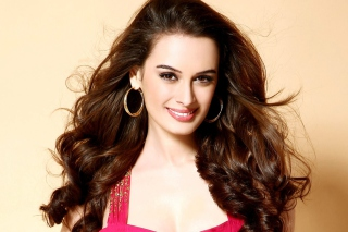 Free Evelyn Sharma Picture for Android, iPhone and iPad