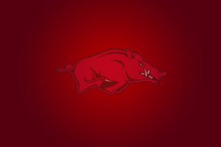 Arkansas Razorbacks Background for Android, iPhone and iPad