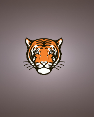 Tiger Muzzle Illustration Wallpaper for Nokia C2-06