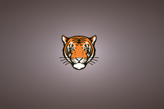 Tiger Muzzle Illustration Wallpaper for Android, iPhone and iPad