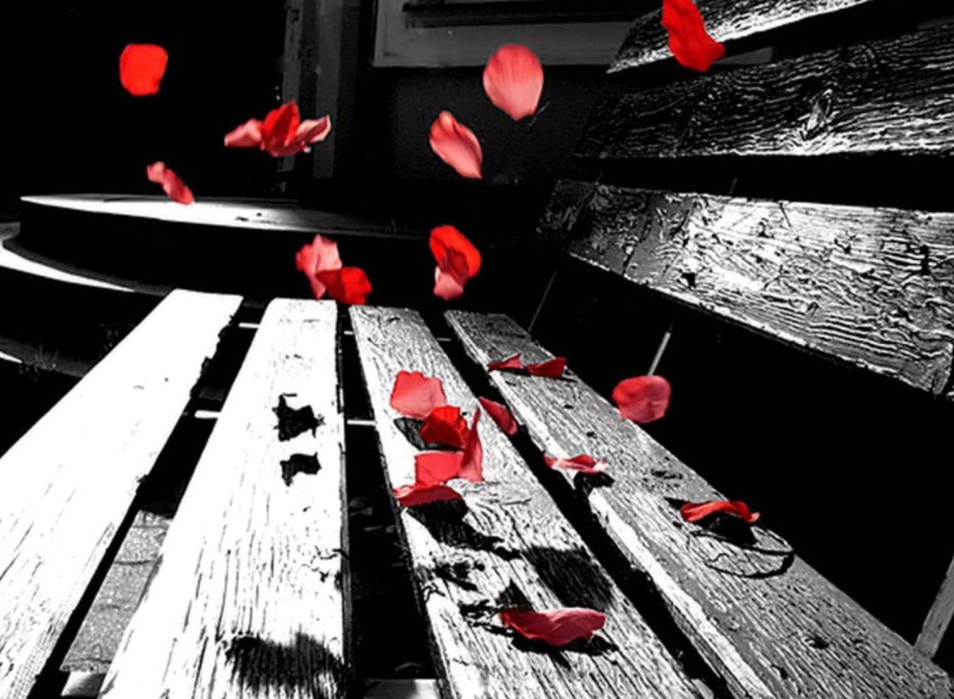 Прикольные черно-красные картинки, днем