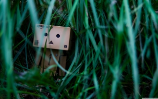 Danbo In Jungle Wallpaper for Android, iPhone and iPad