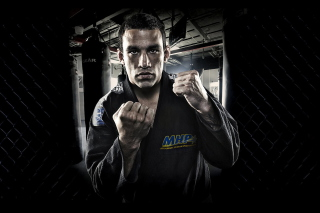 Fabricio Werdum - Mma Picture for Android, iPhone and iPad
