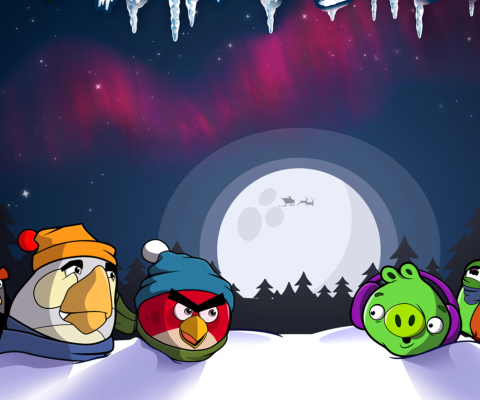 Screenshot №1 pro téma Angry Bird Christmas 480x400