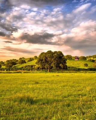 Green Countryside Background for 750x1334
